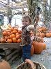 bastian offers you a pumpkin